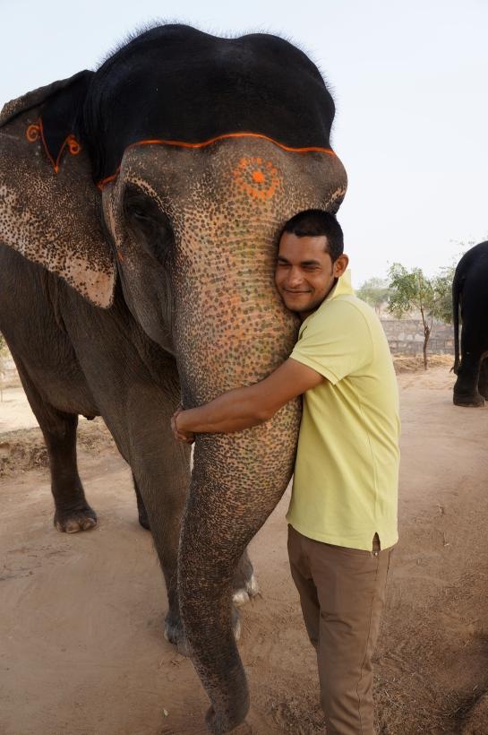rahul si elefantul sau