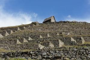 Machu Picchu 3.1